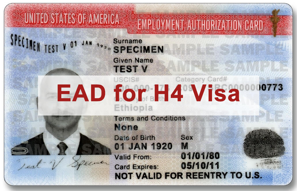 Employment Authorization for H4 Visa Holders: FAQs   USA ...